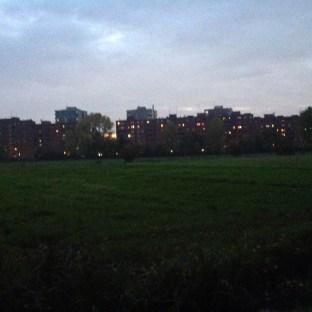 dark skyline
