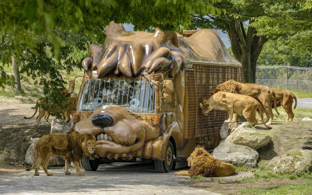 九州自然動物公園アフリカンサファリ/宇佐市