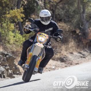 Rider: Fish