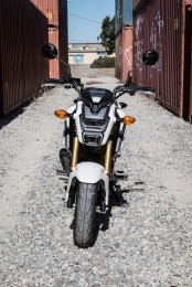 Front view of the Grom.