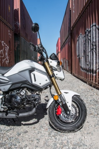 Honda Grom front end.