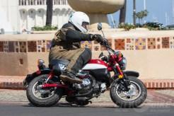 Honda Monkey First Ride on Catalina Island.