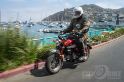 Honda Monkey on Catalina Island.