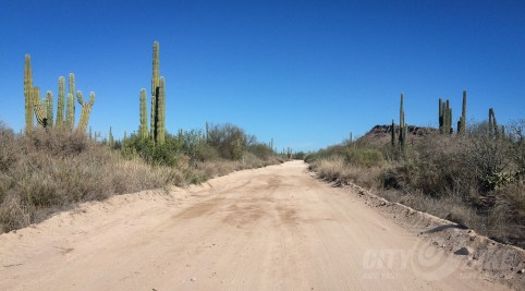 Dirt road in Bahía Concepción.