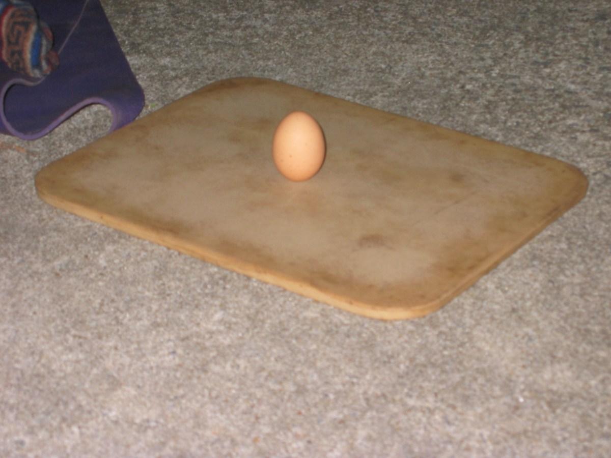 Angela's First Egg