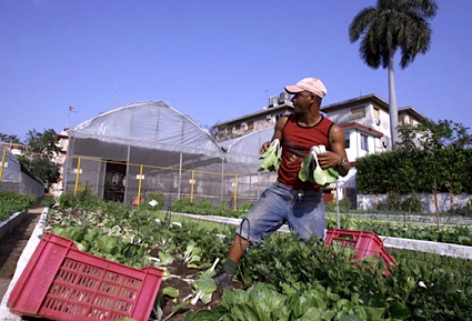CubaAssocPress.jpg
