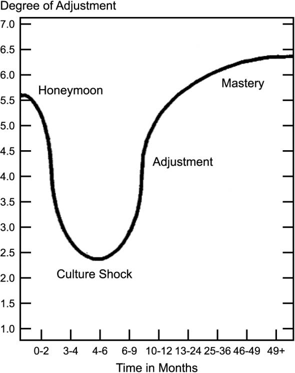 Image result for cultural adjustment u curve