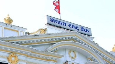 Photo of Only eight local levels left to have commercial bank: NRB