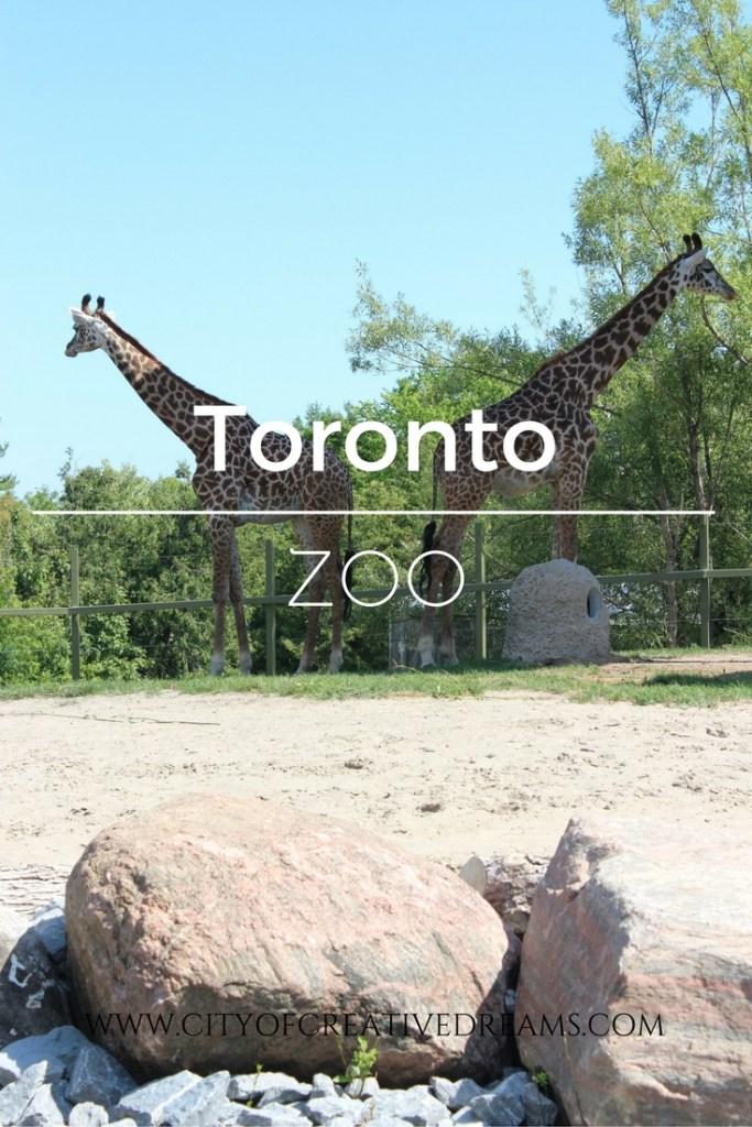 Toronto Zoo   City of Creative Dreams