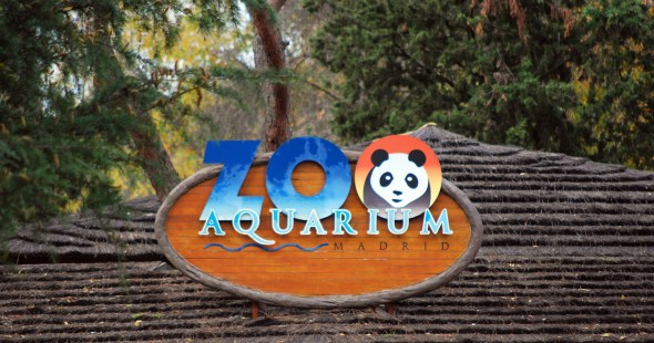Zoo Aquarium Madrid (photo from the internet)
