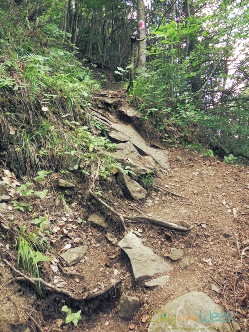 path leading to the top of Detunata Flocoasa