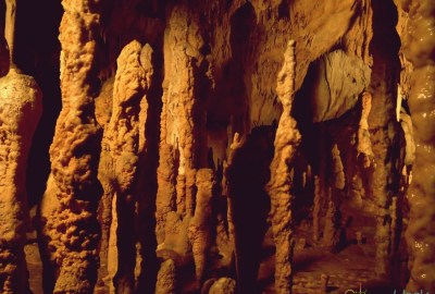 stalagmites at Bear's Cave / Pestera Ursilor de la Chiscau
