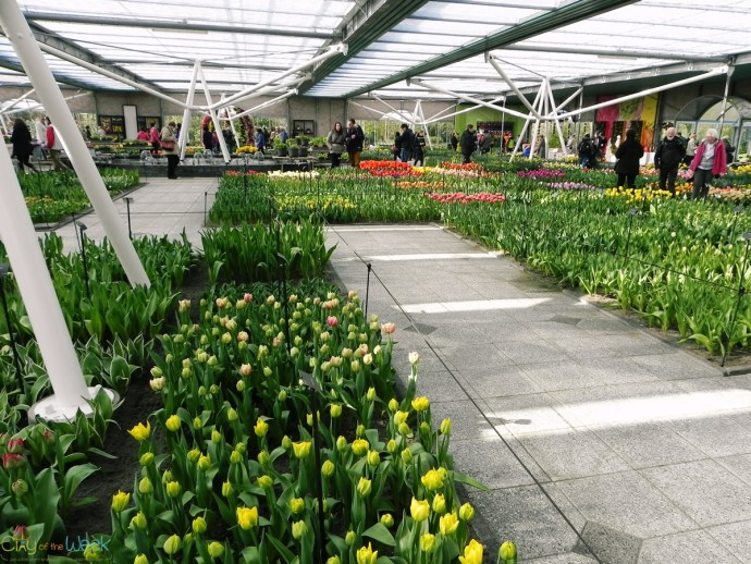 Expo in Willem-Alexander, Keukenhof