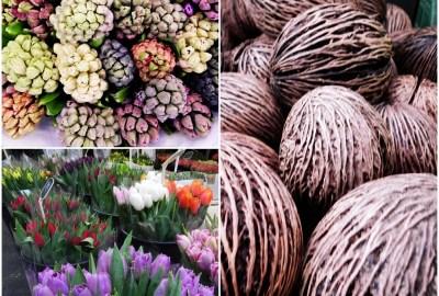 Bloemenmarkt - Amsterdam Flower Market