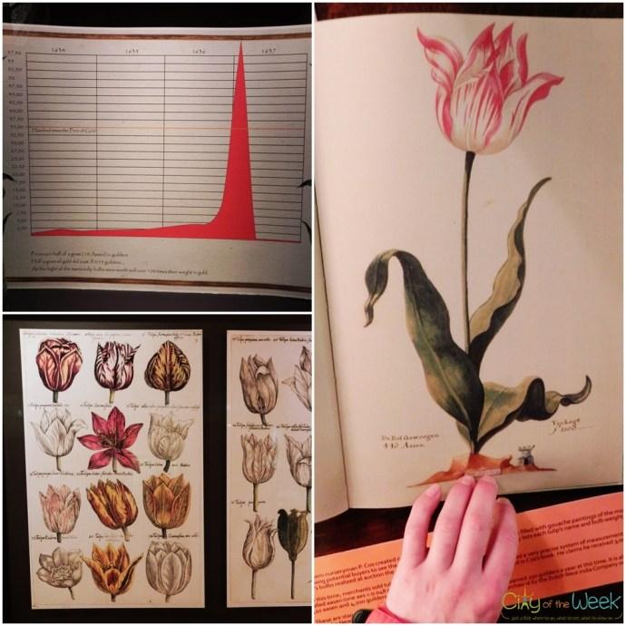 Tulipmania - Amsterdam Tulip Museum