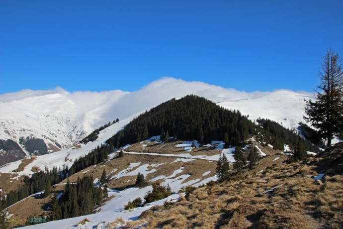 Hiking in the Rodnei Mountains of Romania