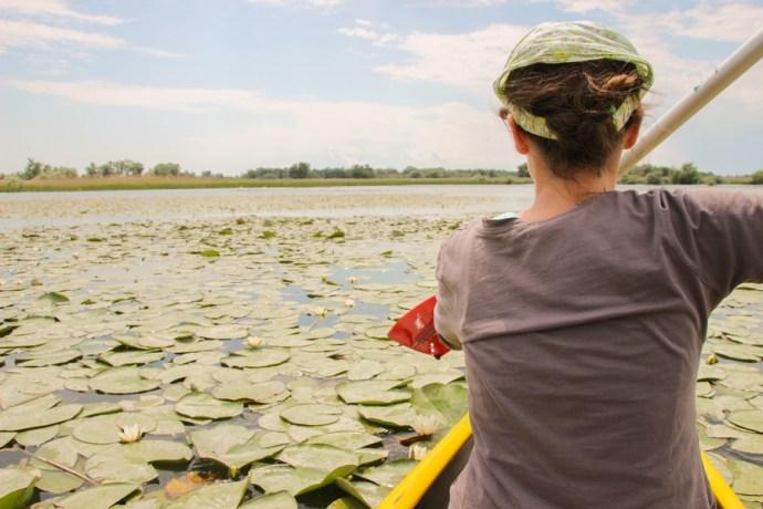 Canoeing Danube Delta, Romania