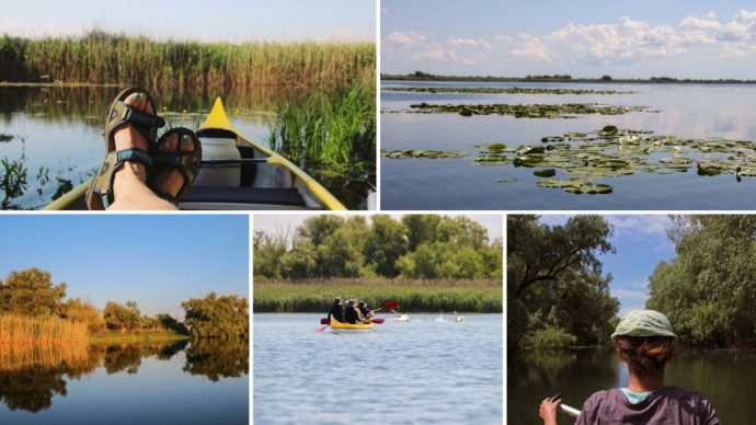 Danube Delta from a Canoe