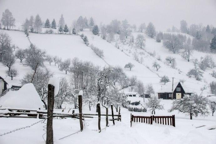 Bran Winter, Southern Carpathians, Romania