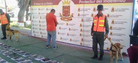 GNB Incauta 222 kilogramos de presunta cocaína en Lara