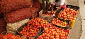 Gobierno nacional activará Feria del Campo Soberano para satisfacer las necesidades del pueblo a través de los CLAP