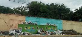 Palavecino: el abandono animal como estrategia política