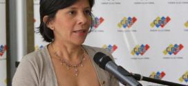 CNE reporta total normalidad en proceso electora de este domingo