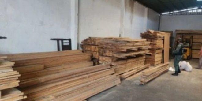 GOLPE AL TRÁFICO DE MADERA / Guardia Nacional Bolivariana incauta más de 45 metros cúbicos de madera en Lara
