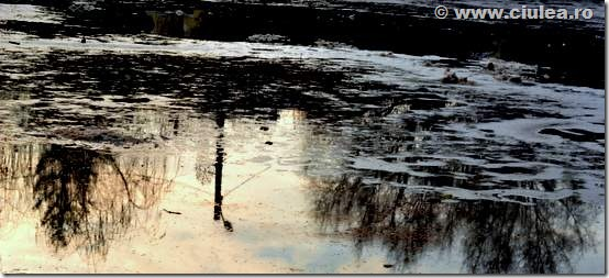 reflectie lac