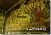 manastirea musca