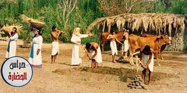 الزراعة فى مصر الفرعونية بحث كامل بالصور