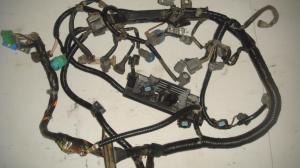 19992000 honda civic si engine wiring harness obd2b 5