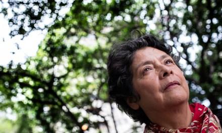 Mirar más allá / Margarita López Maya