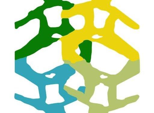 Votar no es sinónimo de elegir. Posición del CDH-UCAB sobre convocatoria a elección presidencial de la ANC