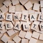 STRESS, LITIGATORS AND LITIGATION: A RECAP