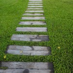 CIVIL LITIGATION REVIEW OF 2018 2: CASE OF THE YEAR: HOW WINNING ON A PRELIMINARY ISSUE CAN LEAD YOU UP THE GARDEN PATH