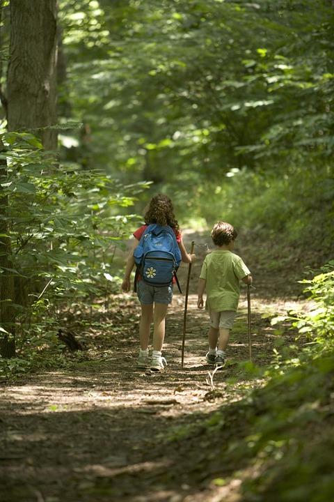 Programa Natura: Rutas De Senderismo En Familia