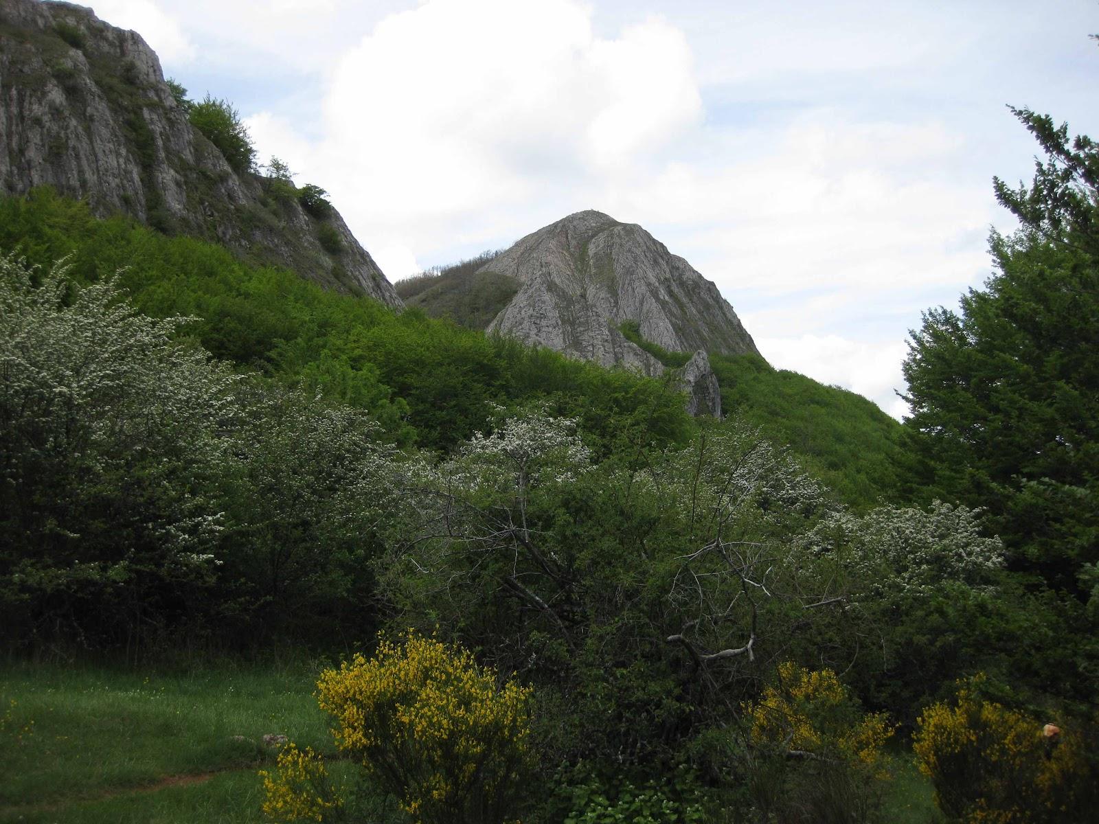 Ruta Natura – Pico El Águila (Belén De Cumbres)