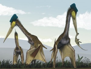 Pterasaurs on the ground.