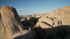 cjparis_Joshua Tree_001