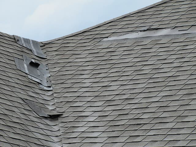 Storm Damaged Roof Shingles