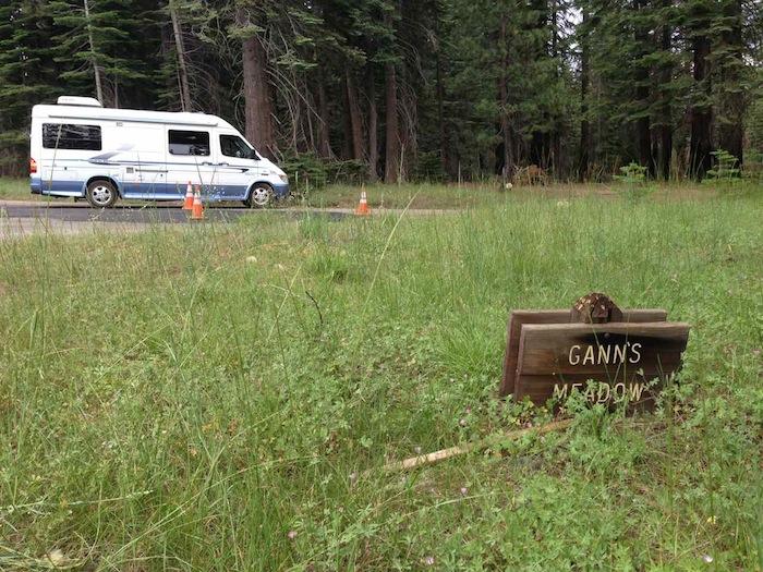 Gann's Meadow, Ebbetts Pass