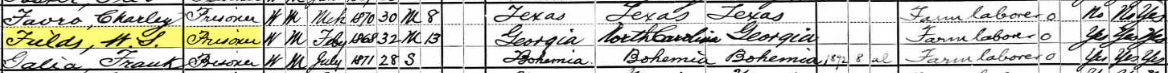 William Sanford Fields, 1900 US Census
