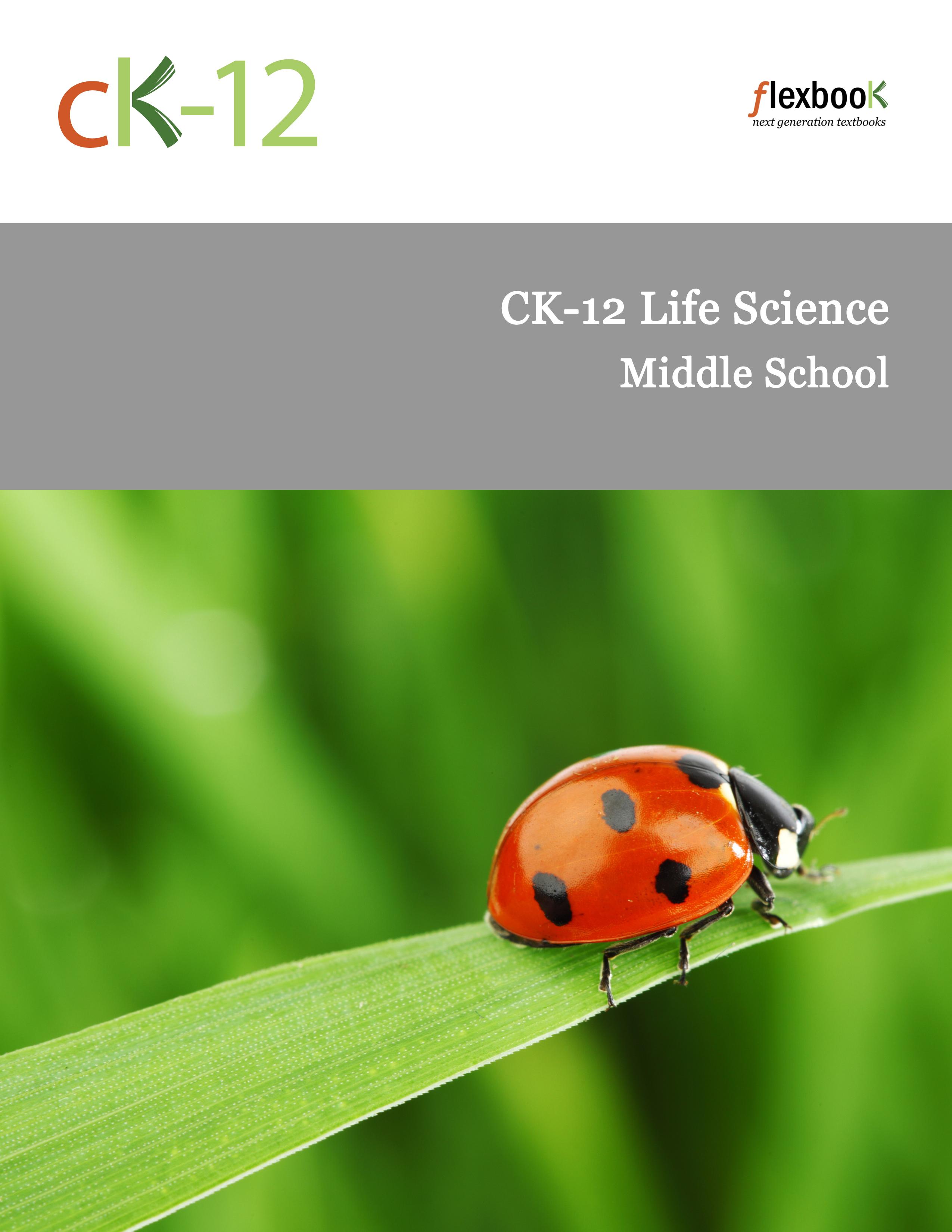 Microorganisms Worksheets Life Science Middle School Microorganisms Best Free Printable Worksheets