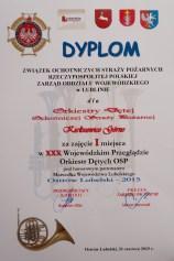 dyplom_orkiestra[1]