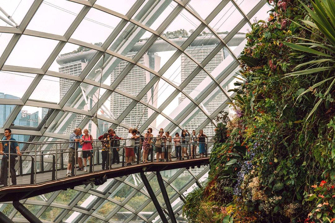 Singapore Gardens by the Bay blog