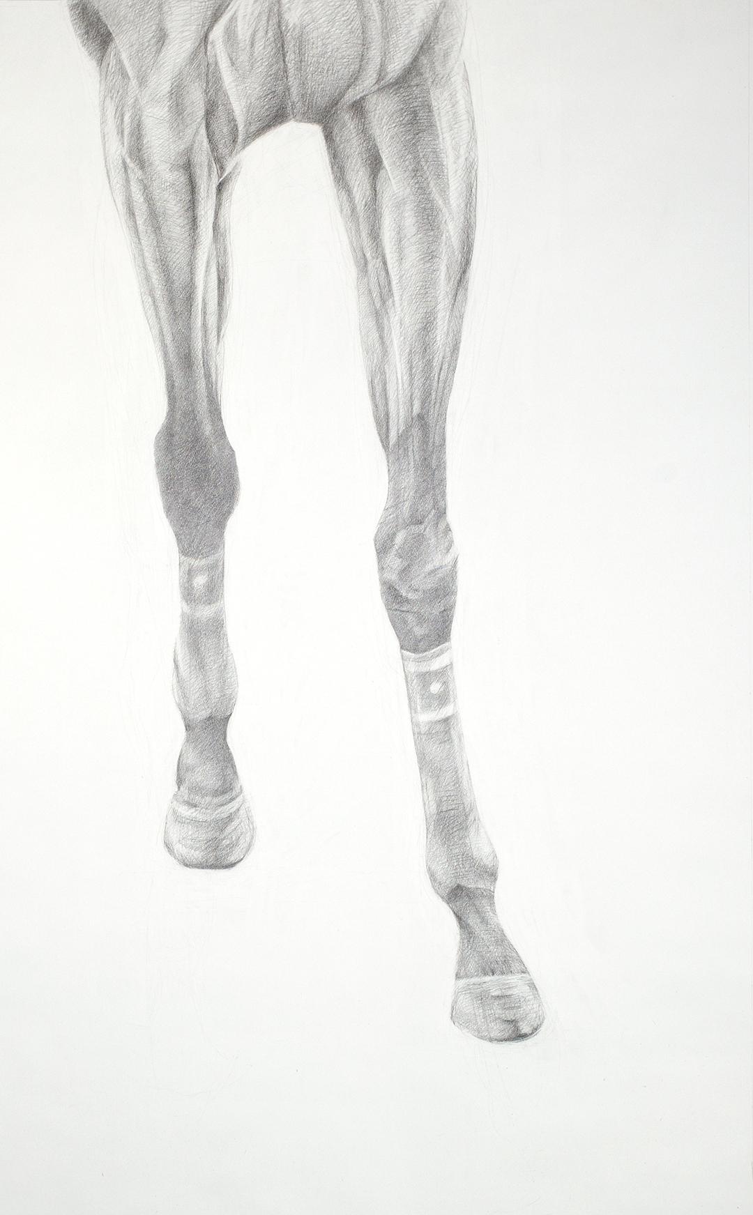 Walking-©Brandt2012