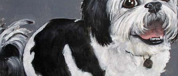 Pet Portrait Testimonial | Sophie | Claire Dunaway Studios