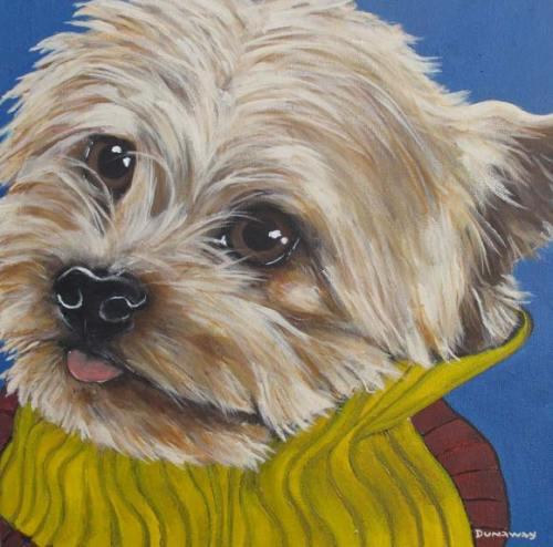 Pet Portraits | Tucker | Claire Dunaway Studios