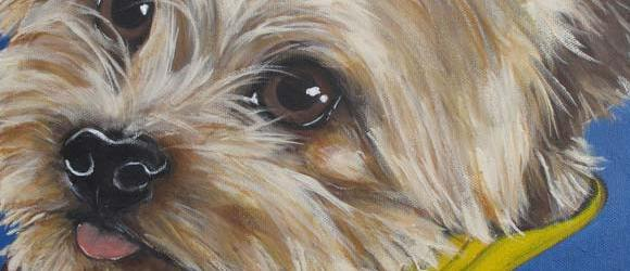Pet Portrait Testimonial | Tucker | Claire Dunaway Studios